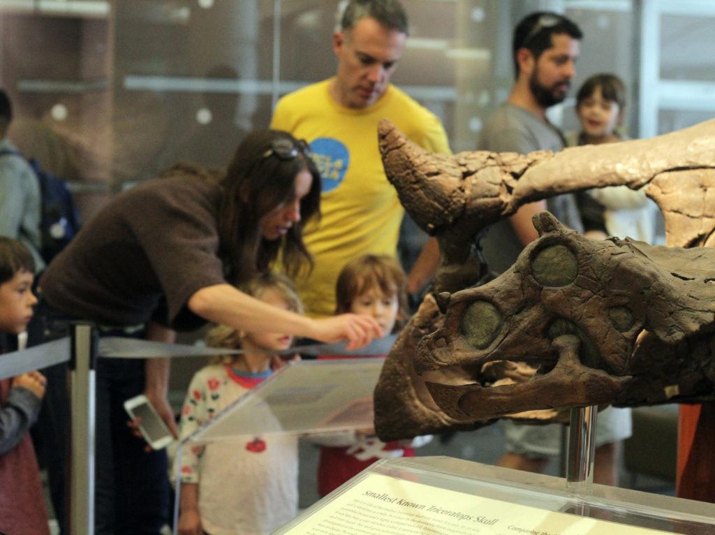 Visitors and dinosaur replica