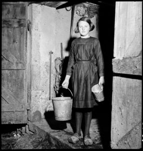 Gathering milk for cheese making. Saint-Clément, France circa 1941.