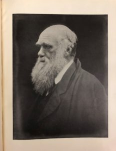 Photographic portrait of Charles Darwin, from Julia Margaret Cameron, Victorian Photographs of Famous Men and Fair Women (1926)