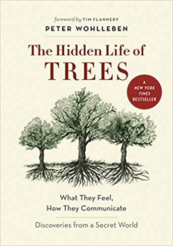 Book cover for The Hidden Life of Trees