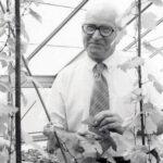 Harold Almo with grape vines